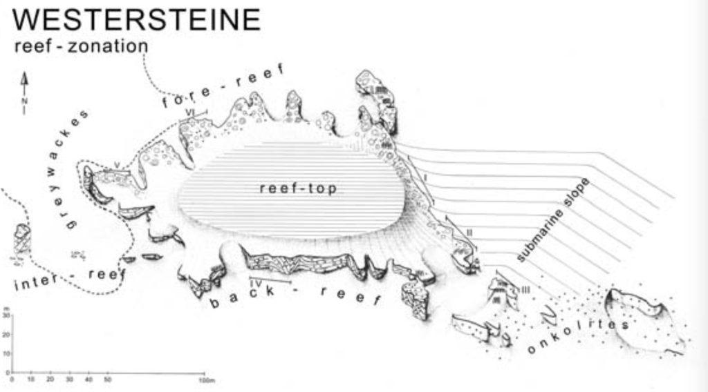 Riffstruktur Westersteine