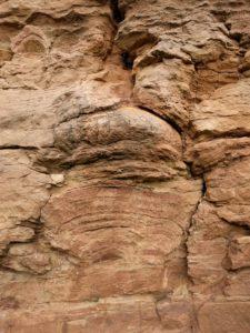 Stromatolith im Steinbruch Heeseberg